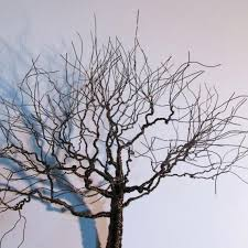 wall arts wire wall trees tree of wall hanging wire