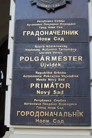 language setting pattern used in society multilingualism wikipedia