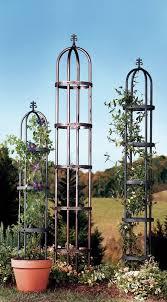 Obelisk Trellis Metal Plow U0026 Hearth Steel Obelisk Trellis U0026 Reviews Wayfair