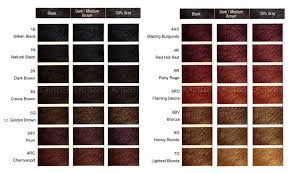 clairol professional flare hair color chart clairol professional flare color chart clairol professional