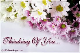 thinking of you flowers someone on your mind free thinking of you ecards greeting cards
