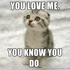 Why You No Love Me Meme - image funcat 8 jpg animal jam clans wiki fandom powered by wikia