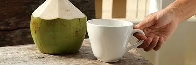 utilisation du lait de coco en cuisine et lait de coco des ingrédients in à consommer sans excès