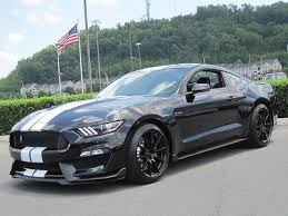 ford mustang gt350 for sale best 25 2015 mustang for sale ideas on shelby gt500