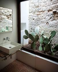 garden bathroom ideas indoor cactus bathroom ideas