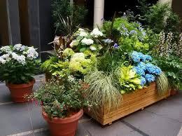 596 best pots and planters delights images on pinterest plants