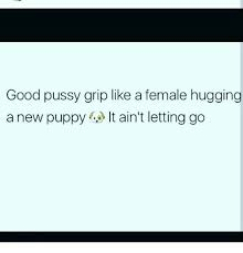 Good Pussy Memes - good pussy grip like a female hugging a new puppyit ain t letting