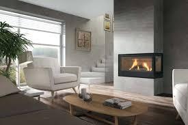 awesome wood burning fireplace insert suzannawinter com