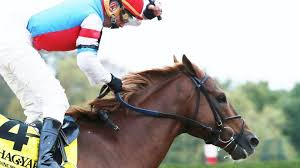 Kentucky how far can a horse travel in a day images Keeneland horses racing news lexington herald