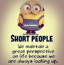 Life Is Short Meme - bob the minion i am short meme great perspective on life minion