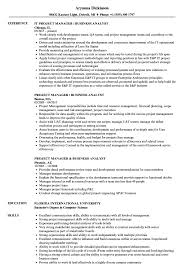 business analyst resume exles project manager business analyst resume sles velvet