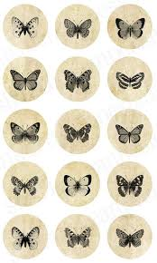 butterfly transfers printables butterfly