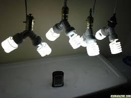lights of america grow light lights of america 24 fluorescent grow light fixture light fixtures