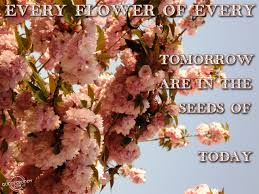 every flower of every tomorrow are in the seeds of today think