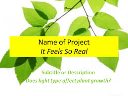 how does light affect plant growth name of project it feels so real subtitle or description does light