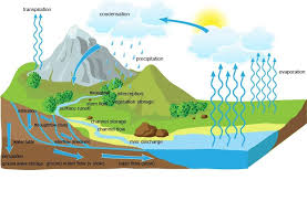 drainage basin hydrological system a level geography