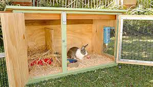 how to build your own outdoor rabbit hutch plans diy free download