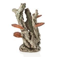 biorb ornament medium fungus on bark