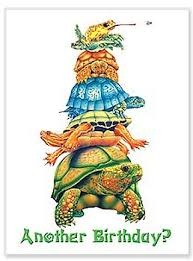 turtle max reptile gifts stationery u0026 desk greeting cards