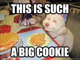 High Dog Meme - this is such a big cookie high birthday dog quickmeme