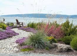 21 best coastal garden images on pinterest coastal gardens back