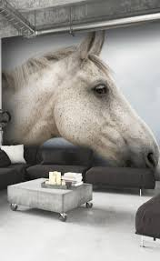 17 best equestrian and horse wallpaper images on pinterest horse grey horse in clouds wall mural