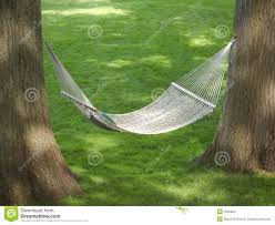 backyard hammock stock images image images with excellent best