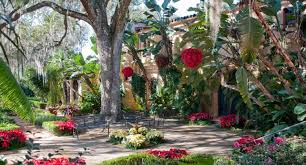 explore the natural wonder of bok tower gardens the american taj