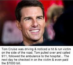 Memes Factory - the memes factory tom cruise was driving noticed a hit run