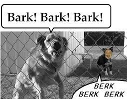 Berk Meme - berk like a derg ermahgerd know your meme