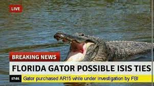 Gator Meme - gators lives matter meme by itshunterxd memedroid