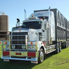 kenworth trucks for sale australia no 11 jbs carriers beef central