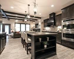 light colored kitchen cabinets u2013 colorviewfinder co
