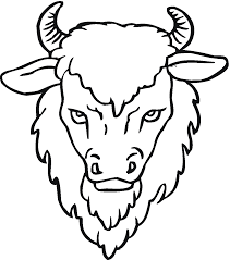 free buffalo and bison coloring pages coloring home