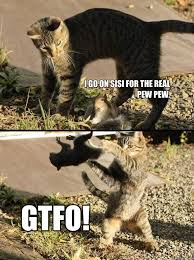 Pew Pew Pew Meme - i go on sisi for the real pew pew gtfo annoying squirrel