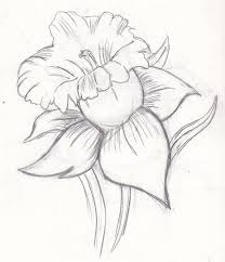 flower sketch by jasmine512 on clipart library clip art library