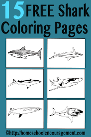 free shark coloring pages for shark week and more shark shark