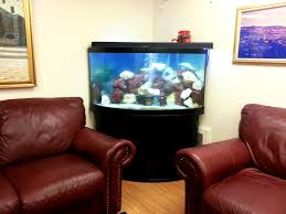 Fish Tank Living Room Table - inspiring fish tank headboard diy pics design inspiration