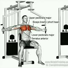 butterfly chest fly machine exercise how to workout trainer by