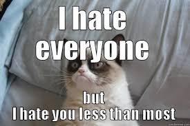 I Hate Everyone Meme - colin or grumpy cat quickmeme