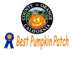 johnson brothers pumpkin patch events family