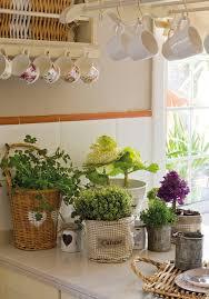 Wohnzimmer Pflanzen Ideen 20 Deko Ideen Mit Blumen Und Zimmerpflanzen Für Zuhause