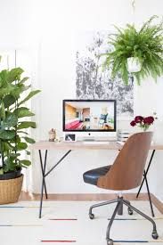 319 best houseplants images on pinterest indoor plants plants