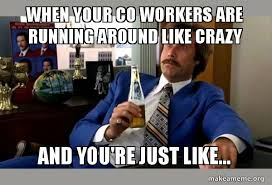 Your Crazy Meme - when your co workers are running around like crazy and you re just