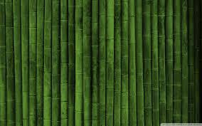 bamboo wall 4k hd desktop wallpaper for 4k ultra hd tv u2022 tablet