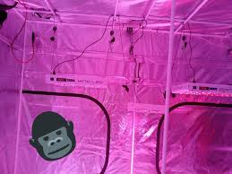 Superclosets by Kind Led Grow Lights Officialkindled Twitter