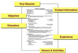 Sample College Student Resume by Resume And Highlight Your Resume Example Create The Top Essay