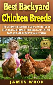 buy best chicken breeds 12 types of hens that lay lots of eggs