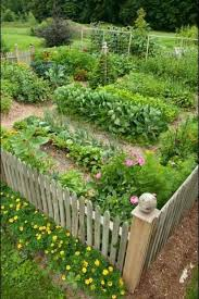 kitchen garden ideas vegetable garden plans designs wooden fence garden paths patio