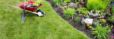 backyard landscaping pictures landscaping pictures with rocks